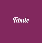 Fibule